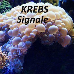 Krebs-Signale